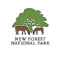 New Forest National Park Blog