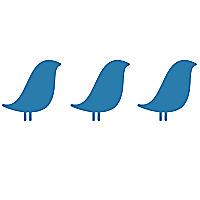 Three Birds Newborn