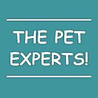 Naperville Animal Hospital | Pet Dental Blog