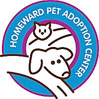 Homeward Pet | Pet Welfare Blog