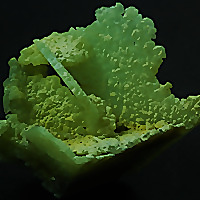 Cape Minerals