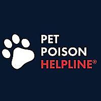 Pet Poison Helpline | News & Blog