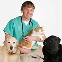 Veterinary Secrets | Youtube