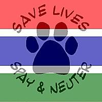 Vet Clinic Gambia