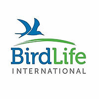 BirdLife International News