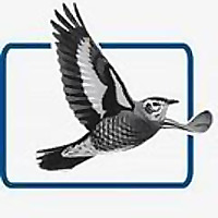 British Birds Rarities Committee (BBRC)