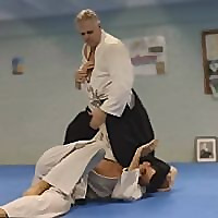 Aikido Warrior Dojo