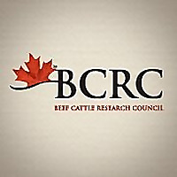 Beef Cattle Research | Excellence in Canadian Beef Research & Technology