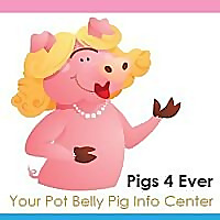 Pigs4Ever
