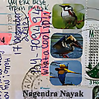 Namaste Postcards