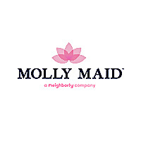 Molly Maid | Cleaning Blog