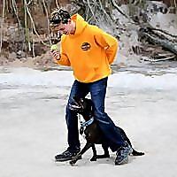 Pivotal Dog Training - Dog Obedience Trainer   Aggressive Dog Training