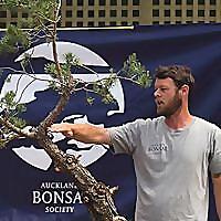 Adrian Bird Bonsai