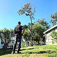 Liberty Tree & Landscape Management