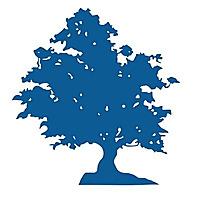Executive Landscaping Blog