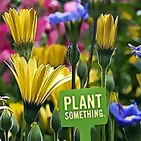 Plant Something Long Island | Live Better | Grow Better