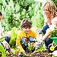 My Gardening Network » Vegetable Gardening