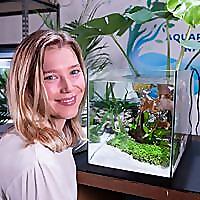 Aquarium Info   Aquarium Aquascaping & Marine Aquariums