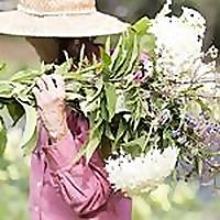Laughing Lady Flower Farm Blog