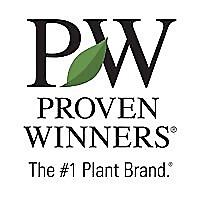 Proven Winners   Youtube