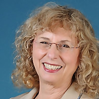 Janet Levine Consulting   Too Busy To Fundraise Blog