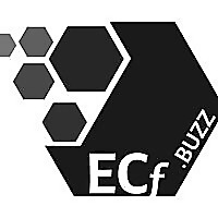 ECf Solutions | Fantasy Equity Crowdfunding