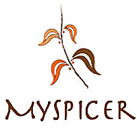 MySpicer