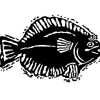 Monahan's Seafood Market | Fresh Whole Fish, Fillets, Shellfish, Recipes, Catering & Lunch Count