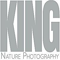 King Nature Photography Blog