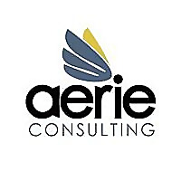 Aerie Consulting Blog