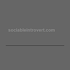 Sociable Introvert