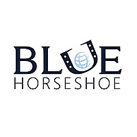 Blue Horseshoe | ERP Implementation & Supply Chain Consulting