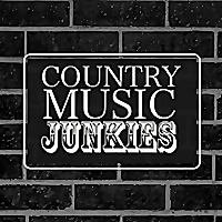 Country Music Junkies by Patrice Whiffen