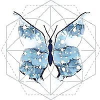 Astro Butterfly