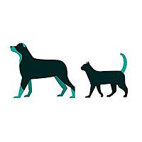 Animallama | Pet Care Blog