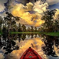New Orleans Kayak Swamp Tours Blog