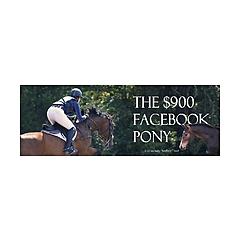 The $900 Facebook Pony