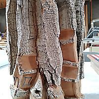 Woodcarvers of Las Vegas