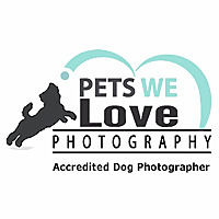 Pets We Love Photography