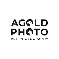 AGoldPhoto Pet Photography