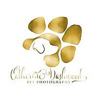Catherine Dashwood Pet Photography
