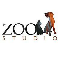 Zoo Studio Pet Photography Brisbane