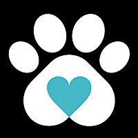 Petside | Dogs