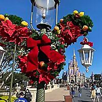 My Mickey Vacation Travel