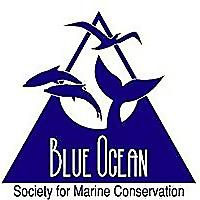 Blue Ocean | Society for Marine Conservation