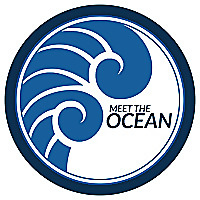 Meet the Ocean