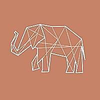 Along Came An Elephant