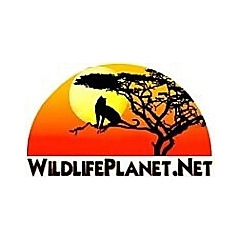 Wildlife Planet