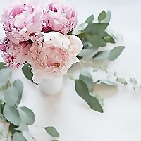 orchids&peonies