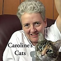 Caroline's Cats